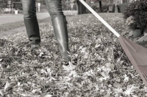 Getting Your Home Winter Ready In Fall